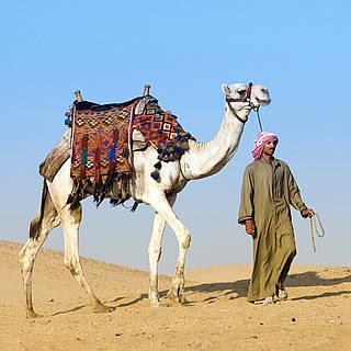 Nomade mit Kamel in der Wüste