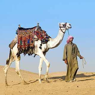 Heimischer mit Kamel in der Wüste