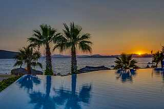 Infinity Pool bei Sonnenuntergang mit Palmen