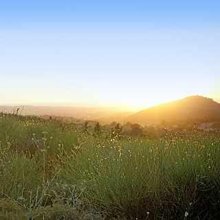 Grüne Landschaft mit Sonneneinstrahlung