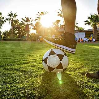 Fuß auf einem Fußball auf gepflegtem Rasen mit Palmen
